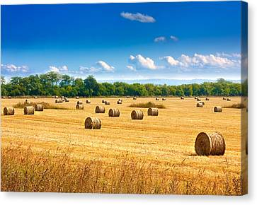 Straw Bales Canvas Print by Boyan Dimitrov