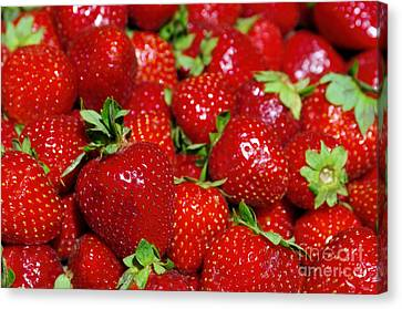 Strawberries Canvas Print by Carlos Caetano