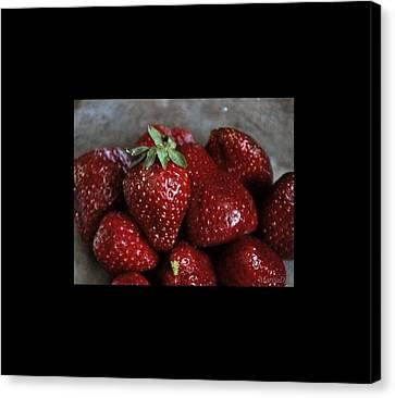 Strawberries Canvas Print by Marija Djedovic
