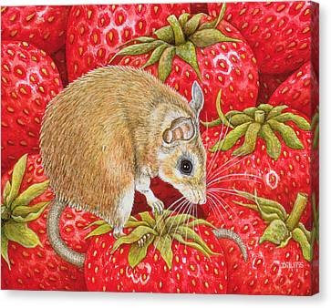 Strawberry Mouse Canvas Print by Ditz