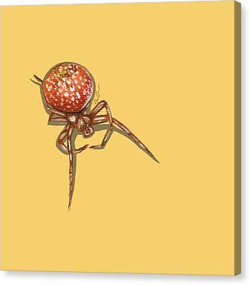 Strawberry Spider Canvas Print by Jude Labuszewski