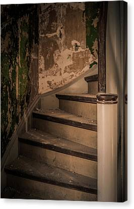Canvas Print featuring the photograph Stray Cat by Odd Jeppesen