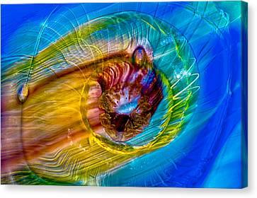 Streaker Canvas Print by Omaste Witkowski