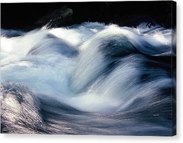 Canvas Print featuring the photograph Stream 1 by Dubi Roman