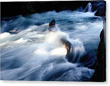 Canvas Print featuring the photograph Stream 2 by Dubi Roman