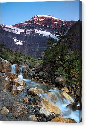 Stream And Mt. Edith Cavell At Sunset Canvas Print by Cale Best