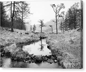 Foggy Day Canvas Print - Stream At Blea Tarn by Tony Higginson