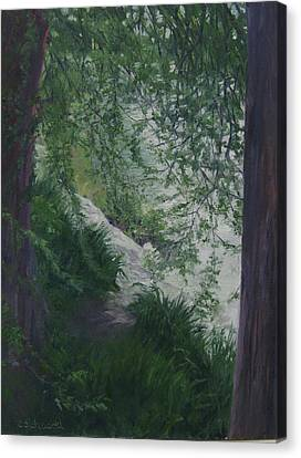 Stream From The Shady Trees Canvas Print by Connie Schaertl