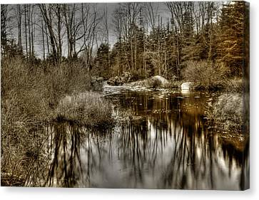 Canvas Print featuring the photograph Stream II by Greg DeBeck