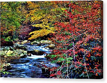 Stream In Autumn Canvas Print by Kevin  Sherf