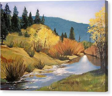 Stream In Modoc County Canvas Print by Maralyn Miller