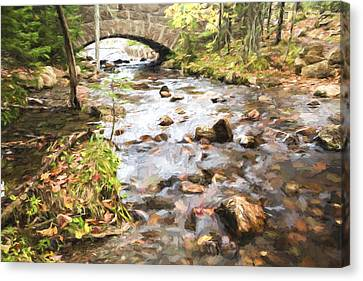 Stream In The Fall Canvas Print by Jon Glaser