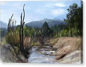 Stream Canvas Print by Ivana Westin