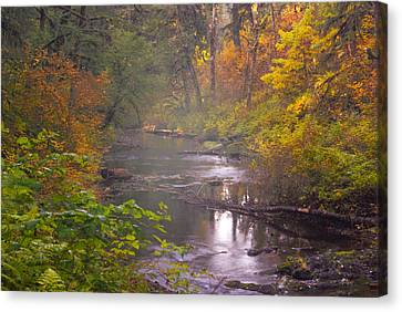 Stream Of The Fall Canvas Print by Dale Stillman