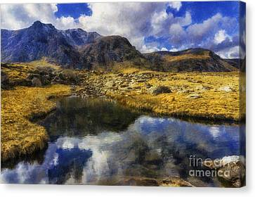 Stream Reflections Canvas Print by Ian Mitchell