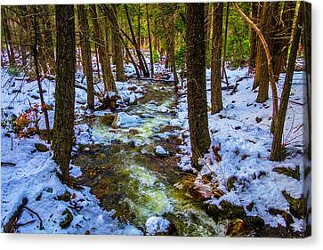 Stream Through Winter Woods Canvas Print