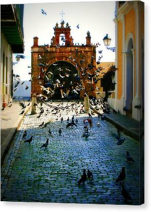 Puerto Rico Canvas Print - Street Pigeons by Perry Webster