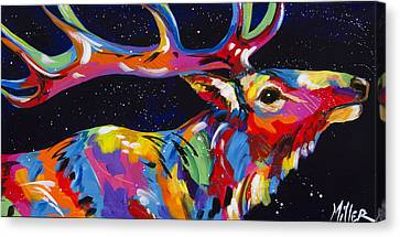 Stretch Canvas Print by Tracy Miller
