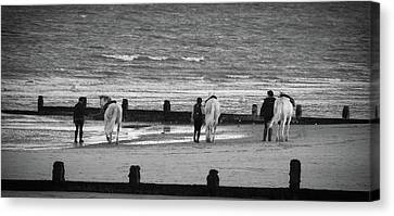 Striding Into The Sea Canvas Print