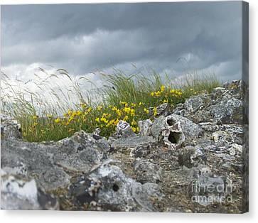 Striking Ruins Canvas Print