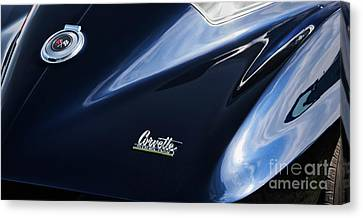 Canvas Print featuring the photograph String Ray Blue by Tim Gainey