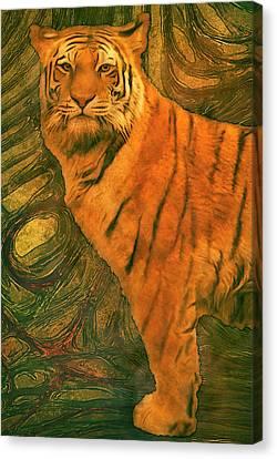 Striped Cat Canvas Print by Jack Zulli