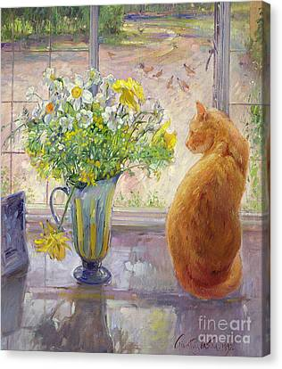 Watching Canvas Print - Striped Jug With Spring Flowers by Timothy Easton