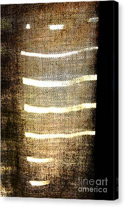 Stripes And Texture Canvas Print