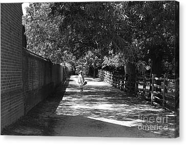 Canvas Print featuring the photograph Stroll To Store by Eric Liller