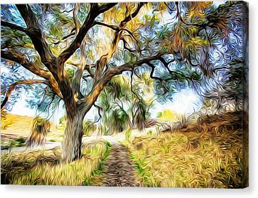 Strolling Down The Path Canvas Print