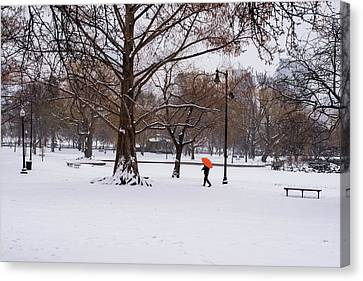Strolling The Boston Public Garden On A Snowy Morning Boston Ma Canvas Print by Toby McGuire