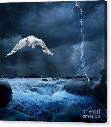 Stronger Than The Storm Canvas Print by Heather King