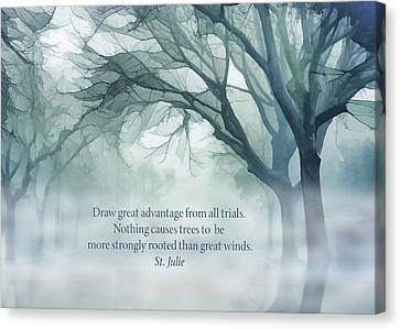 Mist Canvas Print - Strongly Rooted by Terry Davis