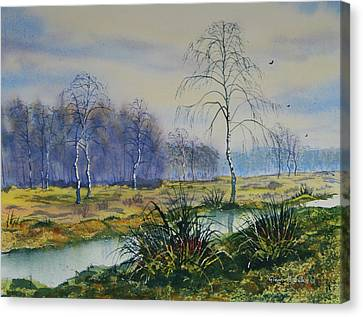 Stream In Flood On Strensall Common Canvas Print