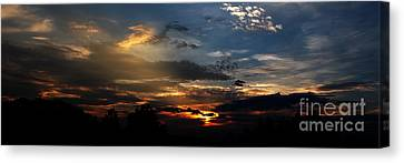 Struggling Sun Canvas Print by James F Towne