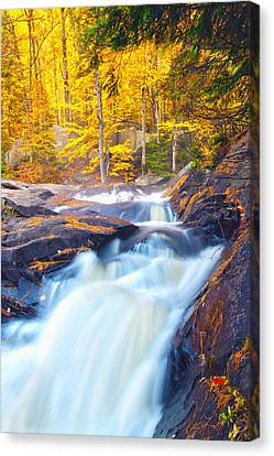 Stubbs Falls I Canvas Print by John  Bartosik
