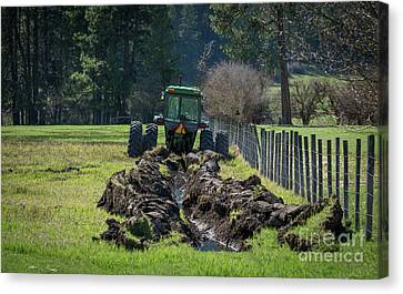 Stuck In The Muck Agriculture Art By Kaylyn Franks Canvas Print by Kaylyn Franks