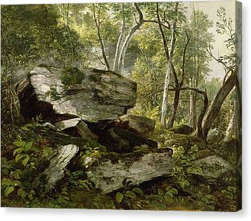 Study From Nature   Rocks And Trees Canvas Print by Asher Brown Durand