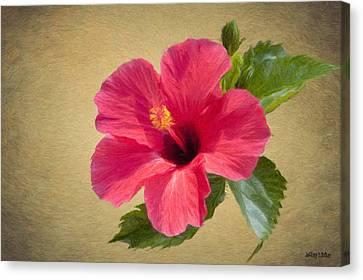 Study In Scarlet Canvas Print by Jeff Kolker
