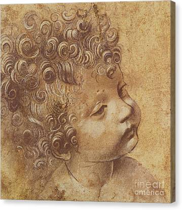 Study Of A Child's Head Canvas Print by Leonardo Da Vinci