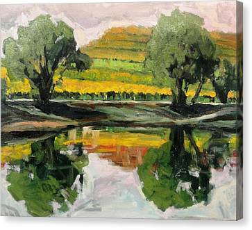 Study Of Reflections And Vineyard Canvas Print