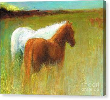 Study Of Two Ponies Canvas Print by Frances Marino