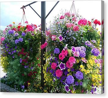 Stunning Floral Baskets Canvas Print
