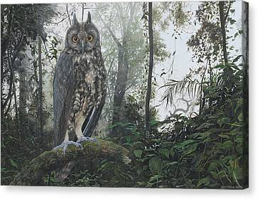 Stygian Owl, Chicaque Cloud Forest, Colombia Canvas Print
