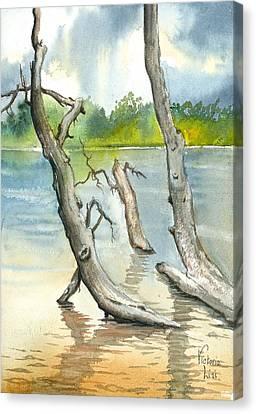 Submerged Cottonwood Canvas Print