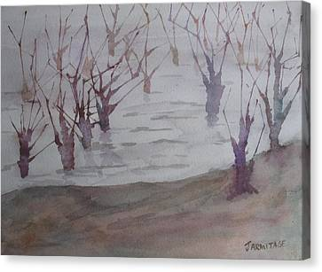 Submerged II Canvas Print by Jenny Armitage