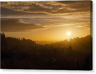 Suburban Golden Sunset Canvas Print by David Gn