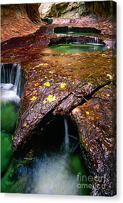 Zion National Park Canvas Print - Subway Pools by Inge Johnsson