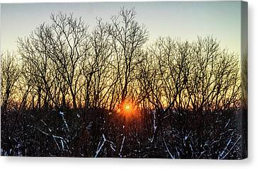 Subzero Sunrise Canvas Print by Randy Scherkenbach