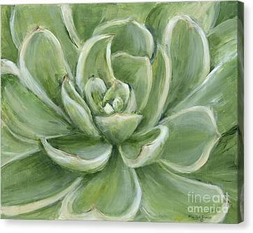 Canvas Print - Green Succulent by Marilyn Dunlap